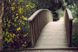 8675_bridge